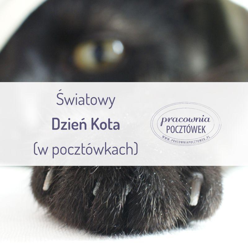 Wpis 07 - Światowy dzień kota w pocztówkach